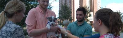 Pups & Pops event